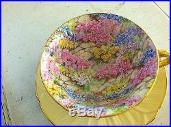 Shelley China Hand Painted Rock Garden Oleander Cup & Saucer Gold Trim Chintz